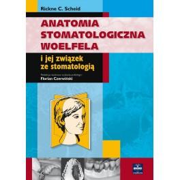 Anatomia stomatologiczna Woelfela i jej związek ze stomatologią