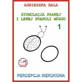 Zeszyt ćwiczeń 1 - Percepcja wzrokowa