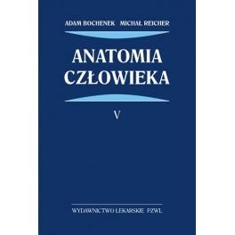 Anatomia człowieka Bochenek Tom 5