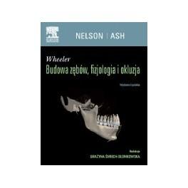 Wheeler Budowa zębów, fizjologia i okluzja