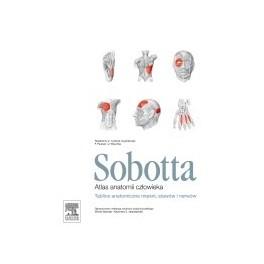 Sobotta. Tablice anatomiczne mięśni, stawów i nerwów. Atlas anatomii człowieka