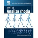 Analiza chodu Whittle