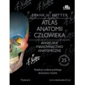 Atlas anatomii człowieka Netter Angielskie mianownictwo anatomiczne NOWOŚĆ