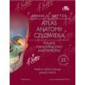 Atlas anatomii człowieka Netter Polskie mianownictwo anatomiczne II wyd. VI NOWOŚĆ 2015