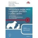 Interpretacja tonów serca i odgłosów płucnych u psów i kotów