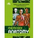 Memorix Anatomy NOWOŚĆ